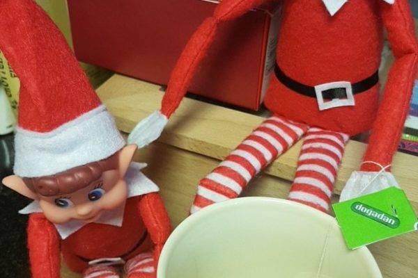 Christmas Elves at NatraTex